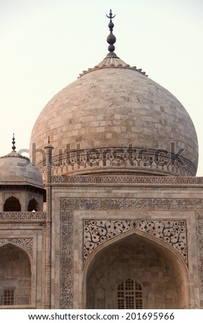 Detail of the Taj Mahal  - stock photo