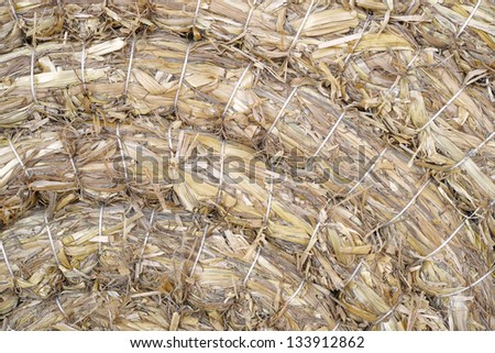 detail of tied and pressed straw - stock photo