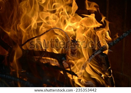 Detail picture of the flames from a burning wood