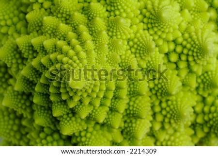 detail shot of romanesco cauliflower - stock photo