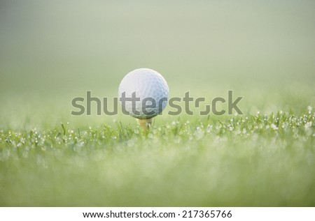 Detail view of a teed golf ball in the grass - stock photo
