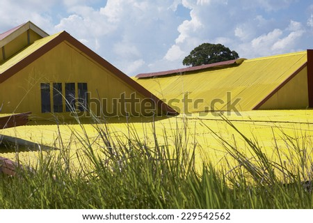 Detail view of a yellow rooftop