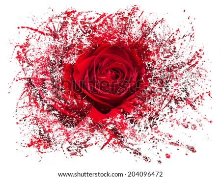 Detailed close shot of velvet red rose breaking into many pieces to suggest either a breakup or perhaps excitement as the rose devolves into abstract illustration - stock photo