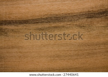 Detailed texture background of a wood panel.