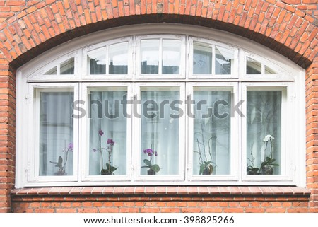 details flowers on nordic typical window - stock photo