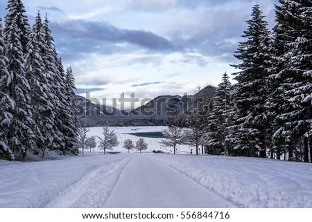 Detroit lake State park in winter. Mongold area. Oregon