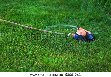 Device of irrigation garden. Irrigation system - technique of watering in the garden. Hose for manual watering the lawn or garden. - stock photo