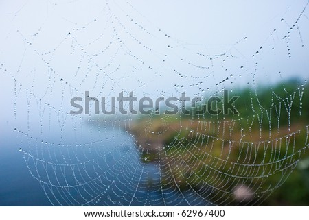 Dew drops on a Spider Web. Focus is in the middle of the web. - stock photo