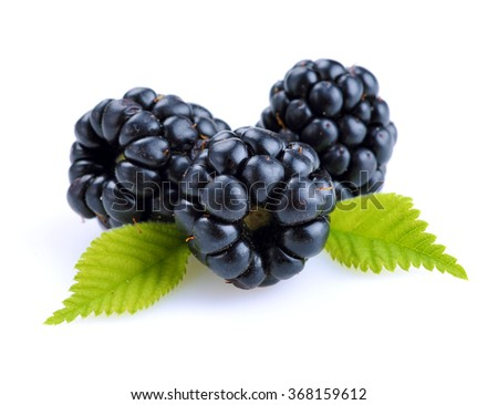 dewberries (blackberries) and green leaves are on white background - stock photo