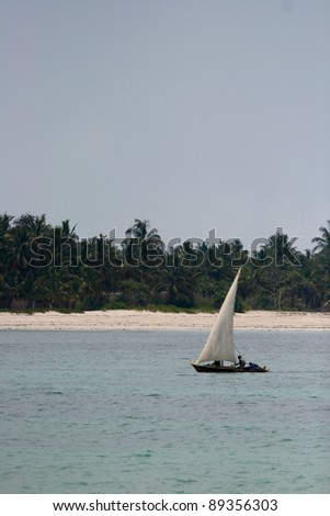 Dhow fishing boat with palm trees in the background