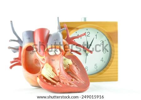 diagnosis of human heart  - stock photo