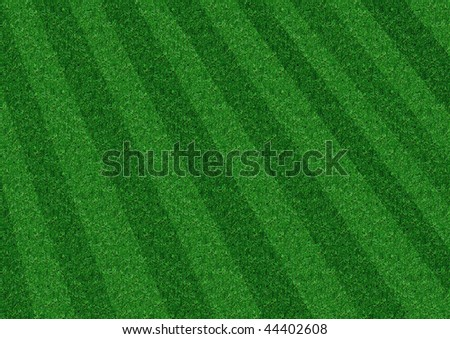 Diagonal Grass a picture of a great lawn - stock photo