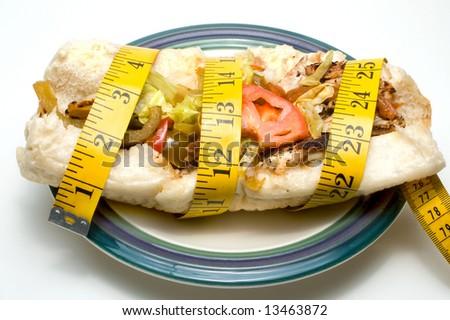 Diet Sandwich - stock photo