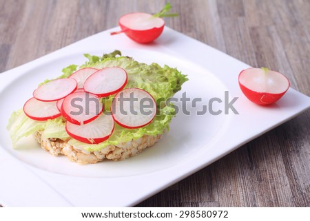 Diet sandwich with salad and radish