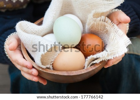 Different breeds eggs in a basket holding by a kid.  - stock photo