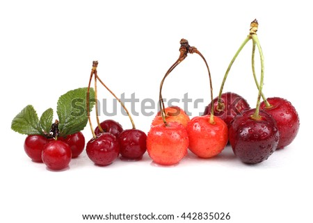 Different color cherries