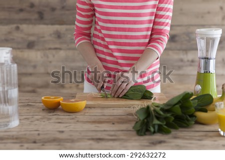 Different ingredients to make a fresh and natural juice - stock photo