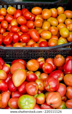 Different Italian tomato varieties on a market stall
