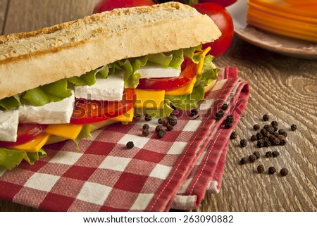 Different kind of cheese sandwich and tomatoes with concept background - stock photo