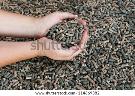 Different kind of pellets -selective focus on the hands - stock photo