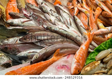 Different kinds of fish for sale at a market - stock photo