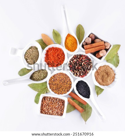 Different kinds of spices in ceramics bowls and spoons isolated on white