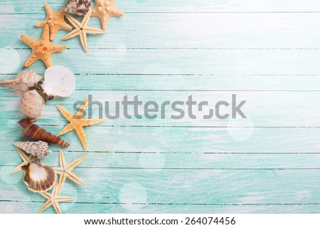 Different marine items in ray of light  on turquoise wooden background. Sea objects - shells, sea stars on wooden planks. Selective focus.  - stock photo