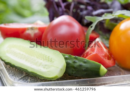 Different ripe organic vegetables tomatoes, cucumber and patty pan squash, fresh arugula and violet basil on a tray