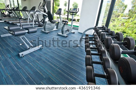 Different sizes and weights dumbbells on stand in fitness room