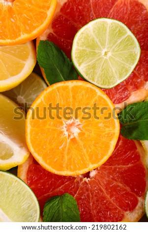 Different sliced juicy citrus fruits, close up - stock photo