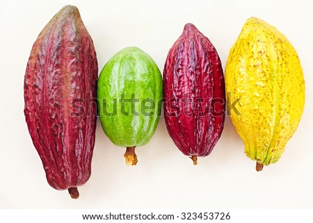 different sorts of colorful cocoa pods on white - stock photo