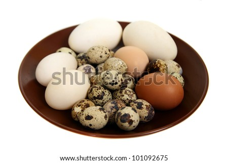 Different types of eggs  on a white background