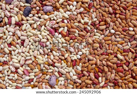 Different types of mottled beans as background