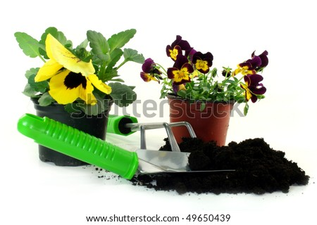 different utensils for planting