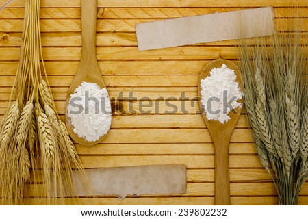 Different varieties of flour and starch from cereal crops. - stock photo