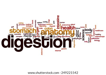 Digestion word cloud concept - stock photo