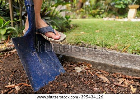 Digging in the garden with a spade. Preparing the garden for planting. - stock photo