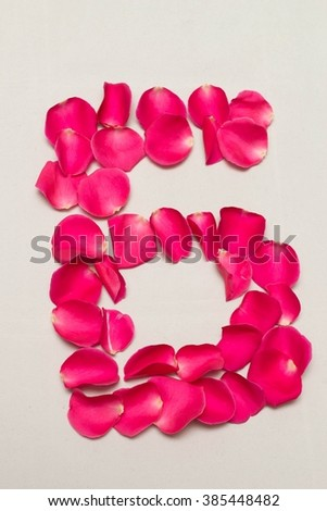 digit arranged by Red rose petals, white background isolated, number 6