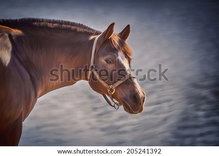 digital art, drawing of a horse, horse art