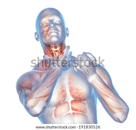 digital illustration colds and sore throat, anatomical vision