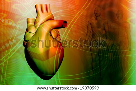 Digital illustration of a heart and human body 	 - stock photo