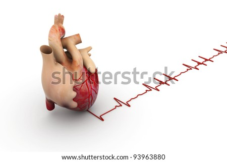 digital illustration of a human heart and ECG graph in white background - stock photo