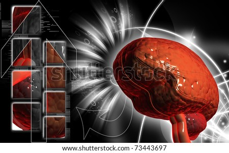 Digital illustration of  brain in colour  background