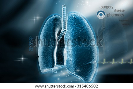 Digital illustration of   Cross section kidney in colour  background