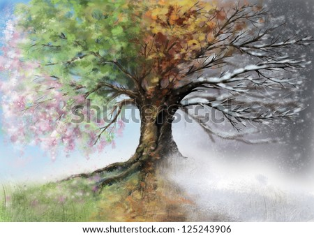 Digital illustration of four season tree. - stock photo