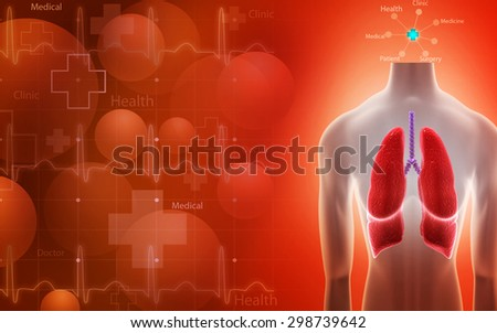 Digital illustration of human lungs in color background - stock photo