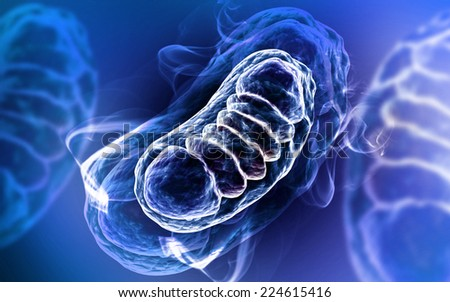 Digital illustration of Mitochondria in colour background