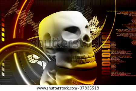 Digital illustration  of  skull  in   colour  background