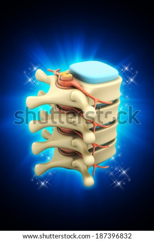 Digital illustration of Spinal column with nerves and discs in colour background - stock photo
