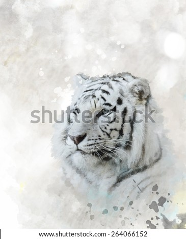 Digital Painting Of White Tiger Head - stock photo